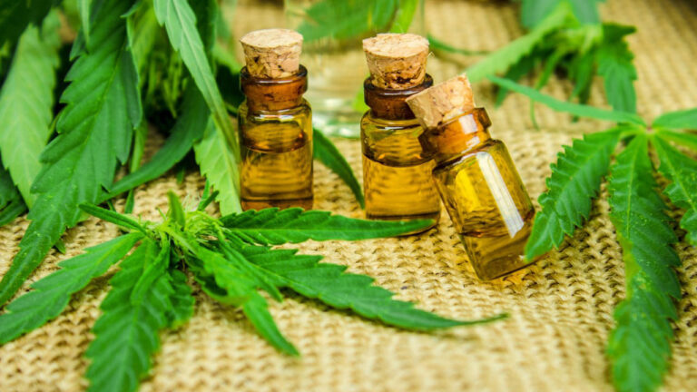 Why Endocannabinoid System Regulation May be Key to a Healthy Life