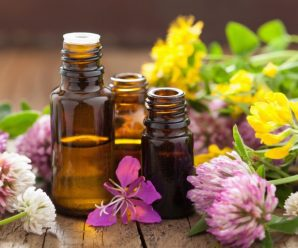 Top 8 Recommended Essential Oils For Respiratory Health + Tips on Using Essential Oils